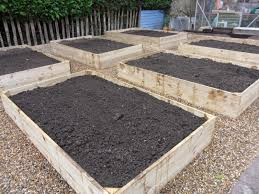 raised bed vegetable garden layout time to fill the beds as