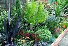 Small Garden Border Ideas Plants For Small Gardens Canada Garden Border Ideas Borders