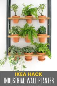 herb garden planter make an indoor herb planter in 10 minutes grillo designs