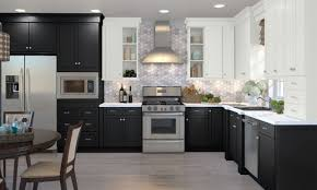 best kitchen cabinets for the money canada modern european style kitchen cabinets kitchen craft