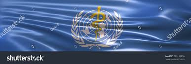 flag of the world health organization 3d illustration world health organization who stock illustration