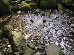 Zen Garden Rocks A Landscape S Story The Nitobe Memorial Garden Ekostories