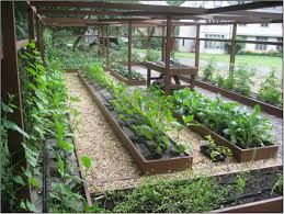 easy vegetable garden design ideas u2013 sixprit decorps