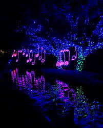 Zoo Lights Oregon by Oh Snap Illuminating The Night With The La Zoo Lights The