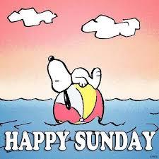 imagenes de snoopy deseando feliz domingo mejores 30 imágenes de de dagen en pinterest buen día buenos días
