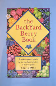 strawberries u2014what type is right for your garden stella otto