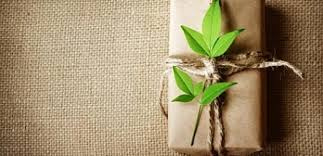 green ideas for corporate gifts earth