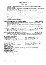 resume on customer service oguz kagan akcivi resume