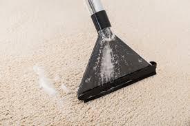 gerüche entfernen aus teppich mit nasssauger entfernen