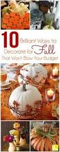Cheap Fall Decorations Power In Numbers Button Acorn Pillow Perfect Pillow Porch