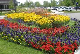flower bed design plans homeca