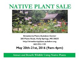native plant list native plant sale strawberry plains audubon center