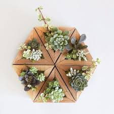 succulent planters triangle succulent planters redwood triangle planter 29 50