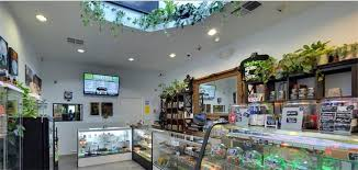 leafly list the best cannabis dispensaries in southern california