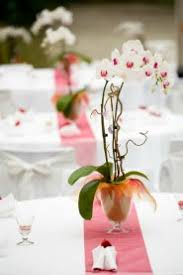 a potted orchid centerpiece is a great idea for easy wedding