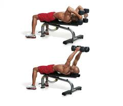 Best Bench Presses Bench Best Way To Increase Bench Easiest Way To Increase My