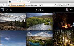 share and view feedback on a photo gallery in lightroom adobe