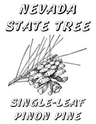 minnesota state flag coloring page free coloring book 7166
