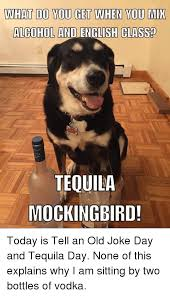 Memes About English Class - what d0 you get when you mik alcohol and english class tequila