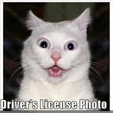 New Driver Meme - drivers license photo meme guy