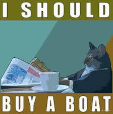 Boat Meme - i should buy a boat cat meme v 1 by dbatista redbubble