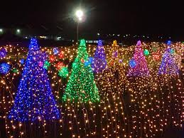 look u0027magical field lights u0027 in nuvali is perfect christmas