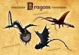schoolofdragons dragons
