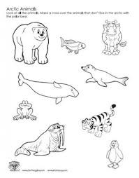 coloring pages arctic animals coloring book polar animals