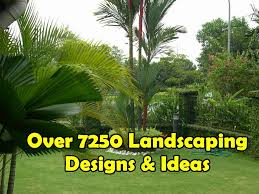 Landscape Ideas For Backyards With Pictures by Landscaping Ideas For Beginners Backyards Front Yards Gardens