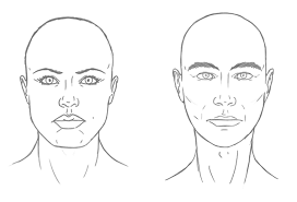 types of hair lines the differences between male and female portraits