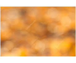 image gallery of autumn colors background