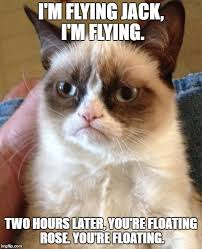 Flying Cat Meme - grumpy cat meme imgflip
