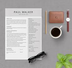 chef resume template 42 free resume templates fresher sales free