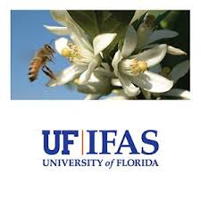 uf ifas extension seminole county florida friendly landscaping