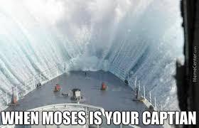 Cruise Ship Meme - memes for cruise addicts everywhere cruisemiss cruise blog