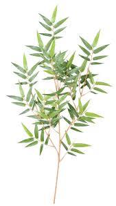 sorte de bambou feuilles artificielles vente de feuillages artificiels artiplantes