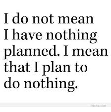 Nothing To Do Meme - i do not mean i have nothing planned i mean that i plan to do