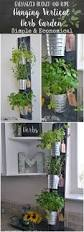 Indoor Herb Planters by How To Plant Herbs In Mason Jars The Contractor Chronicles Such