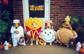 Halloween Costumes Golden Retrievers Pictures Dogs Wearing Halloween Costumes Dog Guide