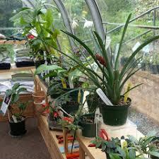 uc botanical garden tropical and indoor plants nursery