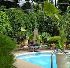 Pool Garden Ideas 17 Best Landscaping My Pool Images On Pinterest Landscaping