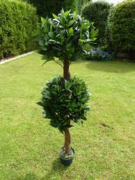 artificial plant 4 u0027 artificial double bay tree in a pot 1 2m