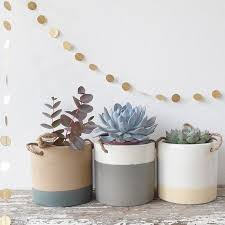 Indoor Plant Vases Best 25 Ceramic Plant Pots Ideas On Pinterest Plants Indoor