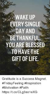 Gratitude Meme - wake up every single day and bethankful you are blessed to have the