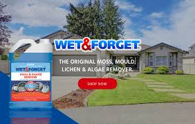 moss mould removal cleaning products wet u0026 forget