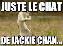 Chat Meme - jackie chat juste le chat on memegen