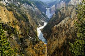 yellowstone national park the 10 things to see travefy