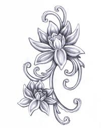 lotus flower drawing images wallpapers flower draw lotus tattoo