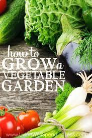 Gardening Vegetables For Beginners by Vegetable Garden Design Plans Canada Gardening For Beginners The