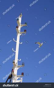Boat Navigation Lights Boat Mast Showing Navigation Lights Seagull Stock Photo 62029